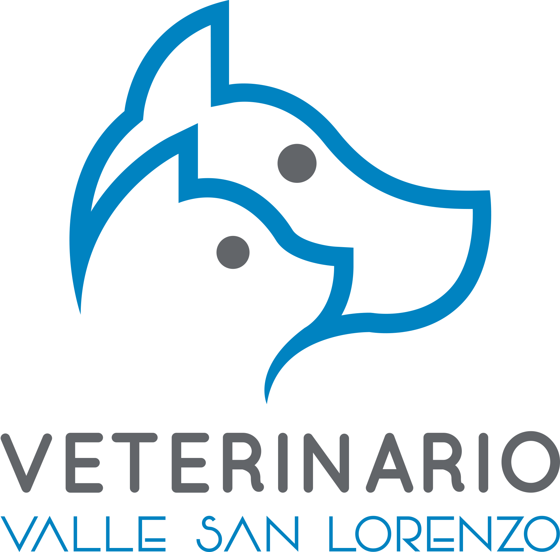Veterinaria Valle San Lorenzo